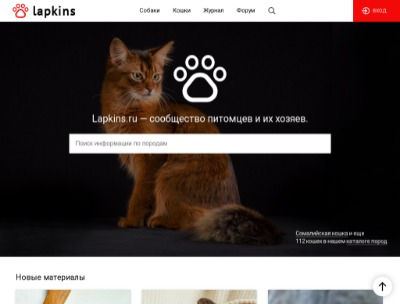 Изображение lapkins.ru