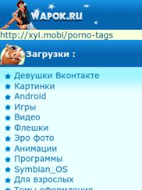 wapok.ru