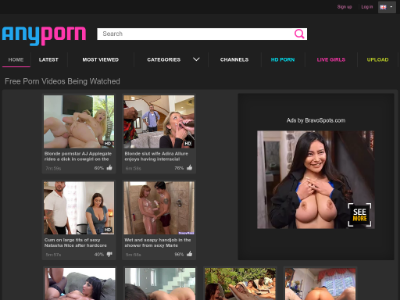 unblocked proxy anyporn.com