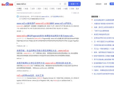 奈斯导航_专业的网站大全分类目录导航网