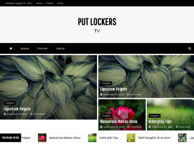 unblocked proxy putlockerstv.se